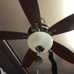 frosted-glass-dome-light-five-blade-ceiling-fan